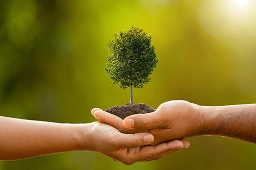 work growin nonprofit
