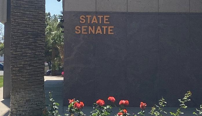 State Representative Raquel Terán to Take Over Alleged Child Sex Abuser Tony Navarrete's Senate Seat