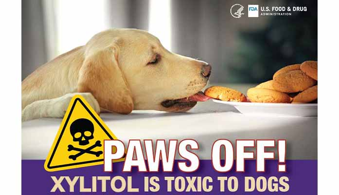 Paws Off Act Will Save Lives Of Dogs From Poison Risk In Common Items
