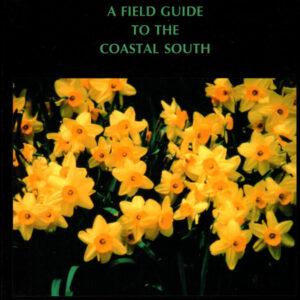 Daffodils in Florida