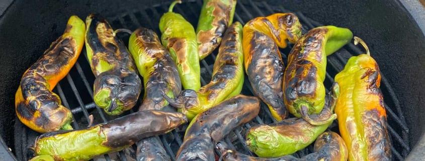 Hatch Chile Salsa and Chicken Casserole