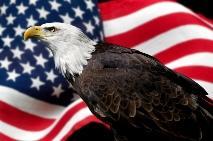 Hearts-Apart-American-Eagle