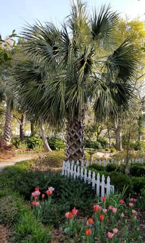 harbor-way-gardens-wrightsville-beach