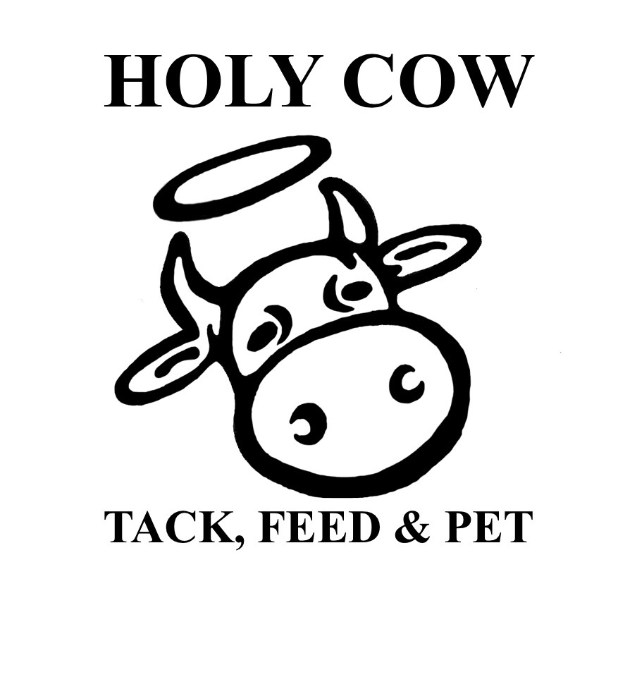Holy Cow Logo Picture