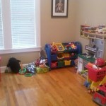 My Journey to Claiming my House Back…One Toy at a Time!