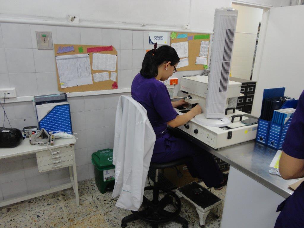 Laboratorio Patología Clínica León XIII
