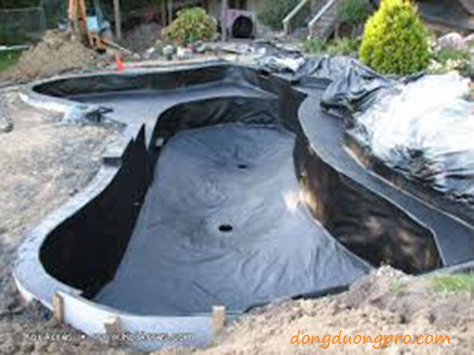 Xây dựng tạo dáng và chống thấm hồ cá koi - Quy trình xây dựng hồ cá koi