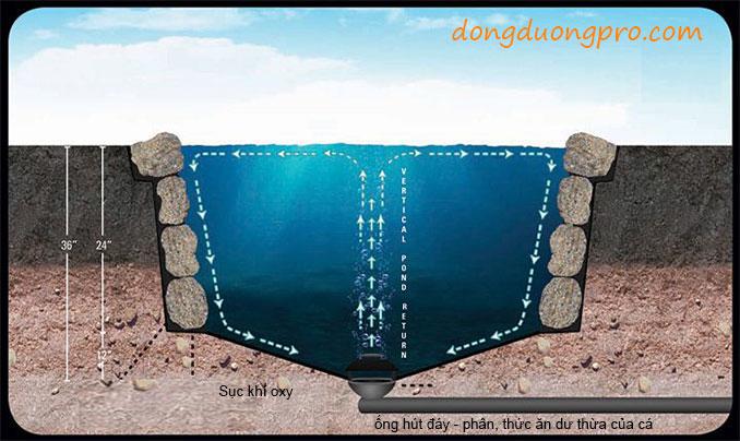 Đặt ống thoát đáy, hệ thống lọc, sục khí oxy cho hồ cá - Quy trình xây dựng hồ cá koi