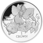 1998 IM Crown - White Bindweed