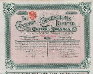 Cassinga Concessions Ltd. - A South African Security, circa 1902