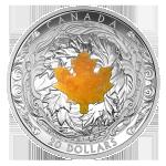 GEM - 2016 Canada $20 Drusy STone