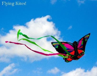 Fly Kites!
