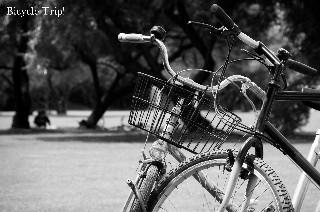 Bicycle Trip!