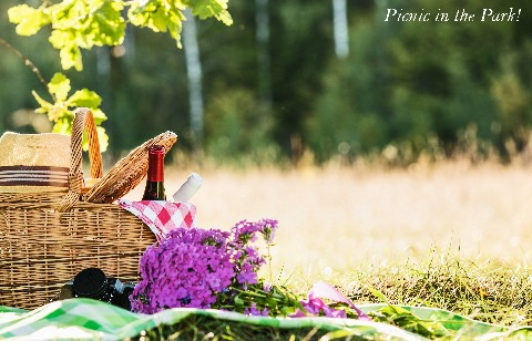Picnic in the Park!
