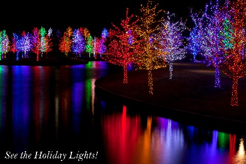 See the Holiday Lights!