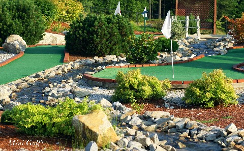 Play Mini Golf Together!