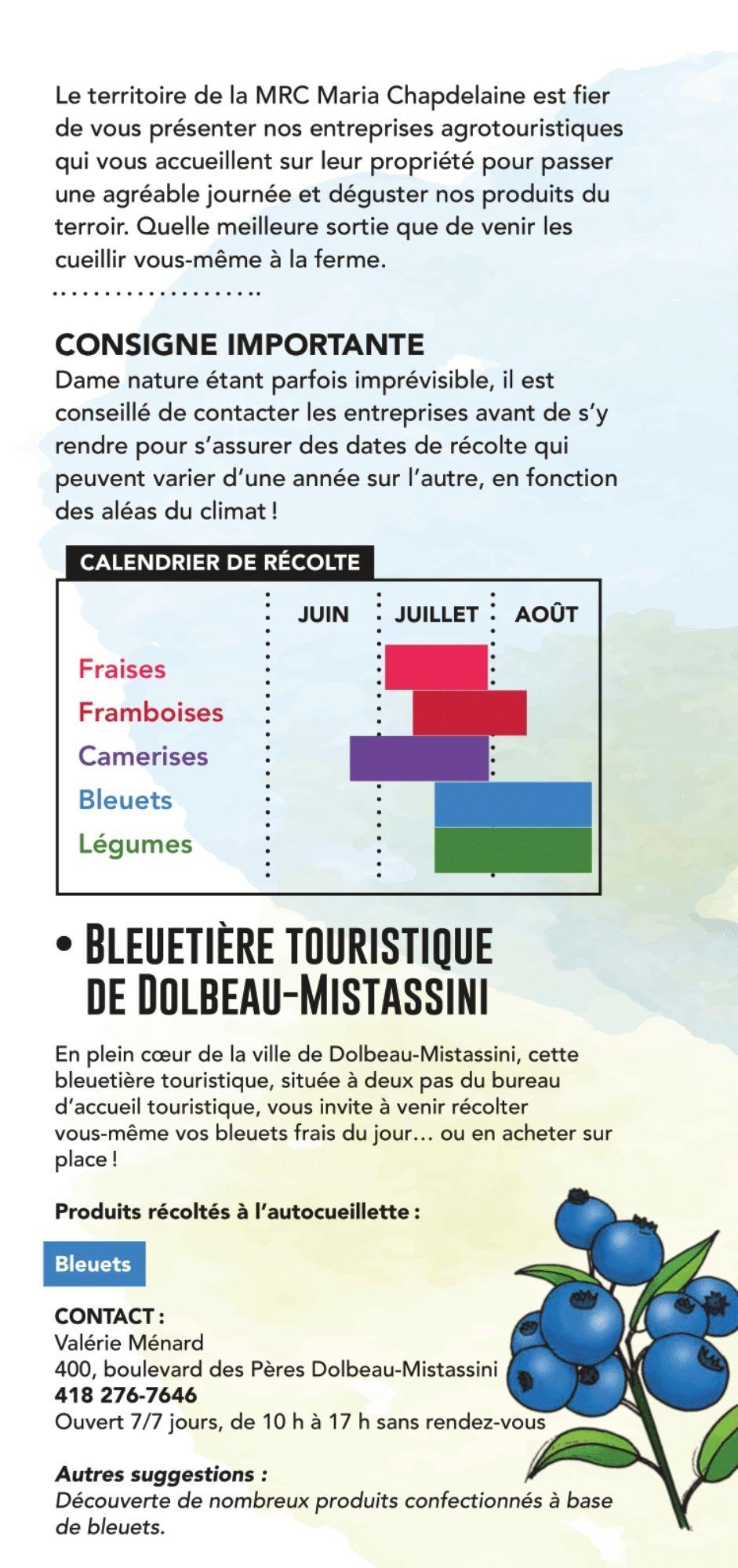 -place-autocueillette-fruits-camerises-bleuets-framboises-fraiseslac-saint-jean