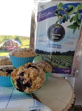 Recette : Muffins aux camerises, aux dattes et aux courgettes