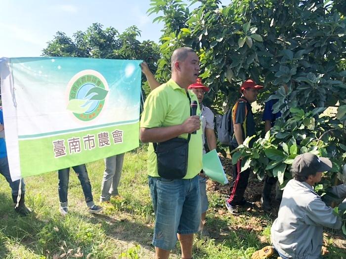20181123-酪梨田間管理分享會-台南青農聯誼會