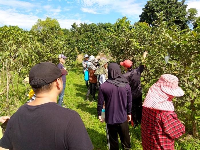 20181119-芭樂及其他果樹田間講習示範課程-台南青農聯誼會