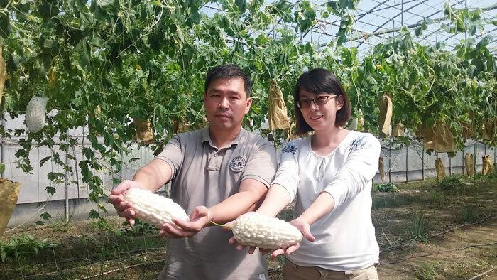 陳雲瑛施信旭 - 台南青農聯誼會