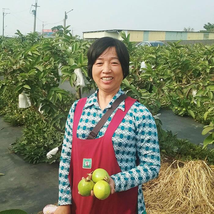 黃淑青 - 台南青農聯誼會