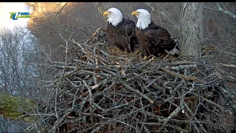 The Dale Hollow Eagles Have Names