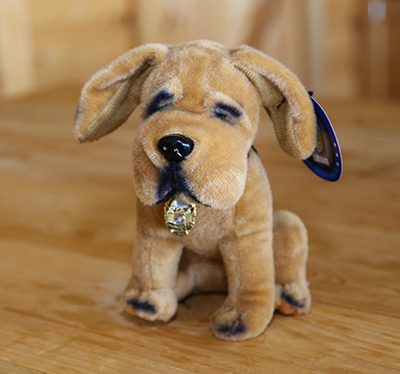 Rex the Rescue pup