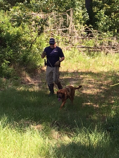 SEK9 CEO, Paul Coley, and K9 Sadie Trail Missing Florida State University Student