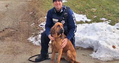 Winnebago County Bloodhound