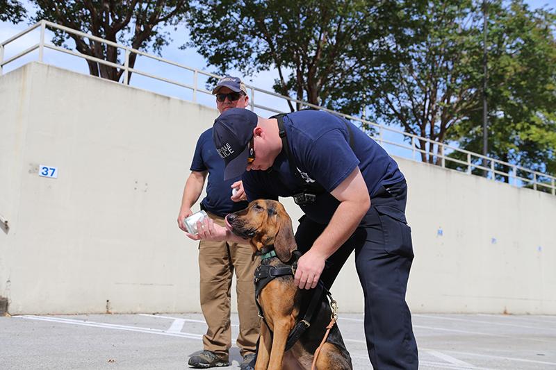 Naperville Police Department Bloodhound Team Find Hit and Run Suspect