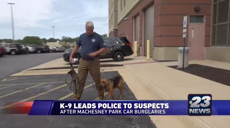Winnebago County Bloodhounds Fight Crime in Illinois