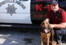 Naperville Bloodhound Team