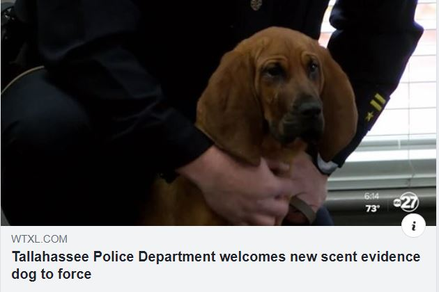 WTXL TPD Gets New Bloodhound