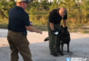 Bay County Bloodhound Team Finds Missing Suicidal Child