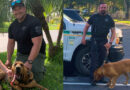 Lee County Bloodhound Teams Find Missing Juveniles