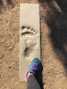 bigfoot-1-768x1024