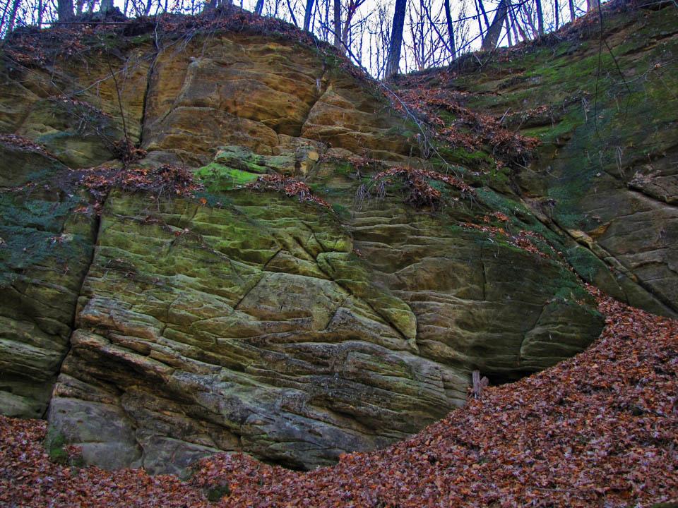 Mitchell Glen - sandstone wall 11-7-09