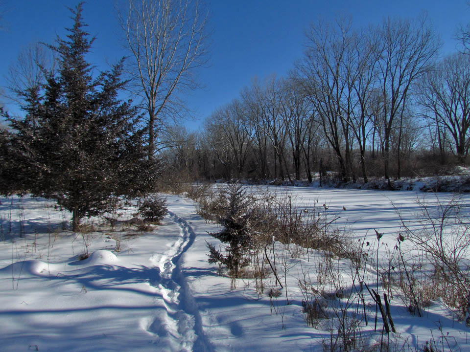 Sunnyside 1-21-12 side trail7