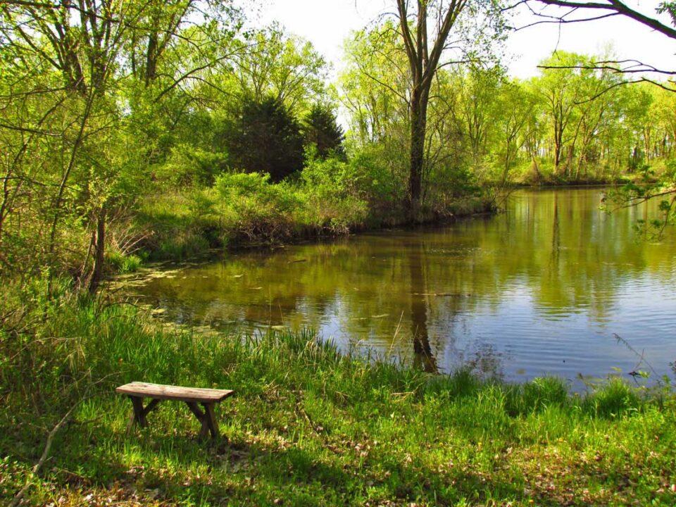 Sunnyside 5-22-14 lagoon1a