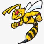 Wasp056