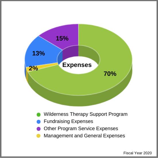 Event Revenue Grant Writing Revenue Donation Campaign Revenue Other Primary Revenue Family Coaching Service-Parent Fees In-Kind Donations Interest Revenue
