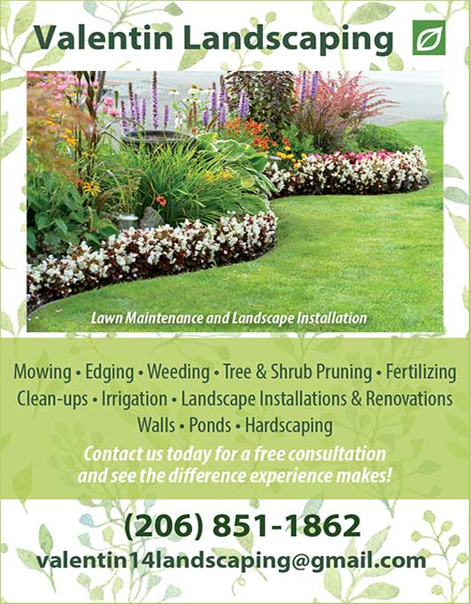 Promotion Image of Valentin Landscaping at 206-851-1862