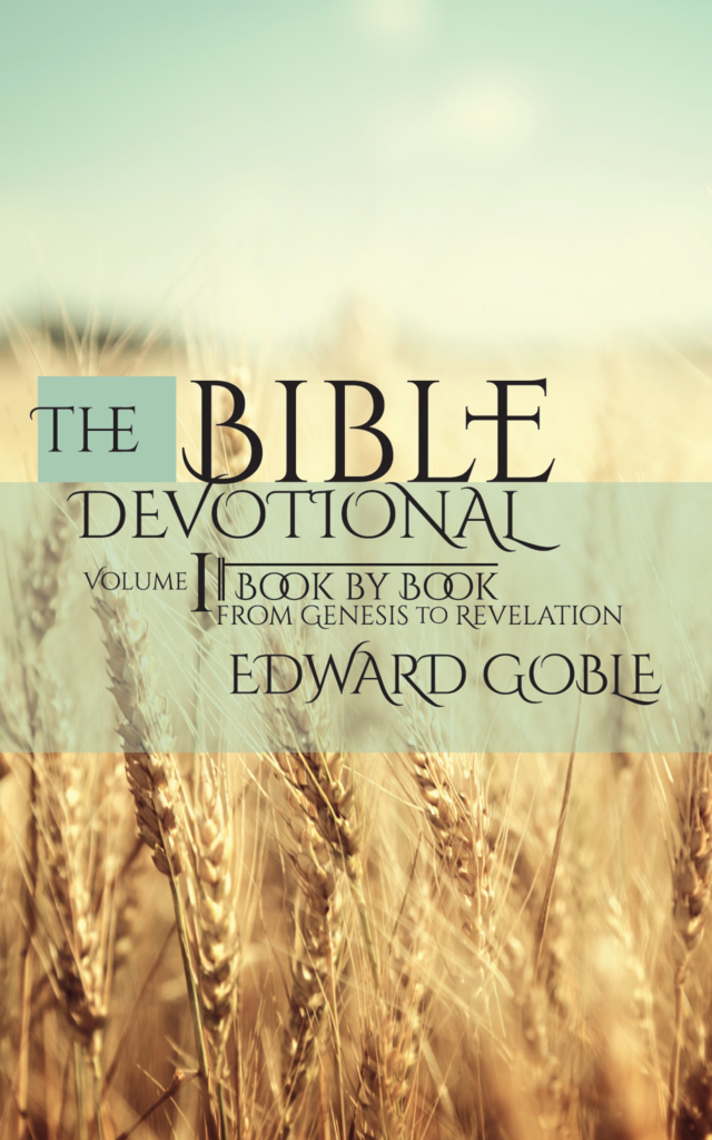 bible devotional cover