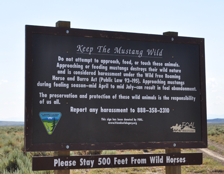 Volunteer to refurbish informational signs within the McCullough Peaks Herd Management Area.