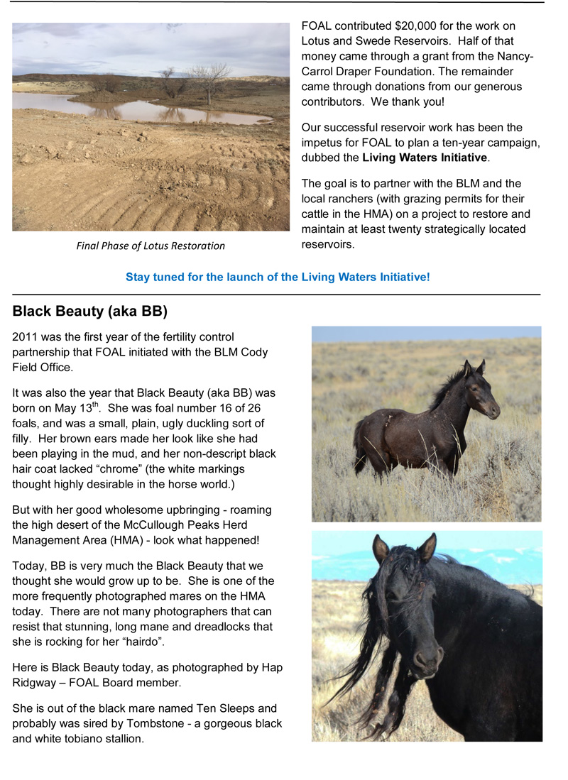 March 2021 Newsletter 3-13-21 Page 2
