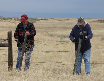Volunteer to fix fences.