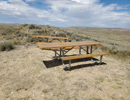 Purchased private property adjacent to the HMA which gives us a physical presence where the wild horses live and can be seen.