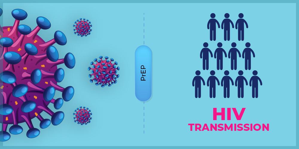 How-Does-PrEP-Prevent-HIV-Transmission