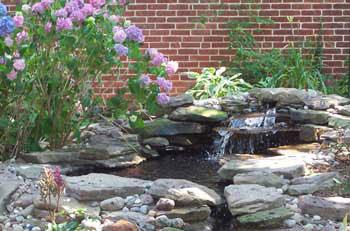 Cambridge house pond